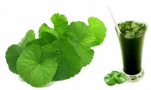 Nước rau má dễ làm và có nhiều tác dụng