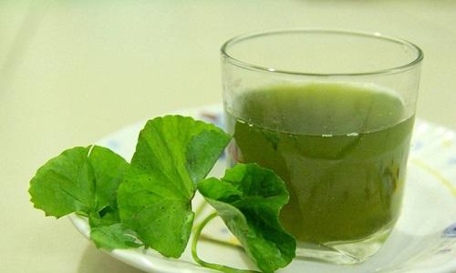 Uống nước rau má có tác dụng gì?